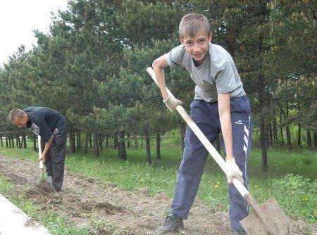 «Химстрой-С» кинул детей или 100 трудовых нарушений не предел