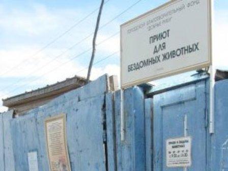 Приют в Новомихайловке судится с северской администрацией