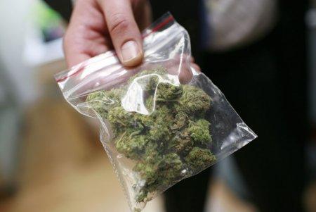 В июле наркополицейскими изъято 12 килограммов наркотиков