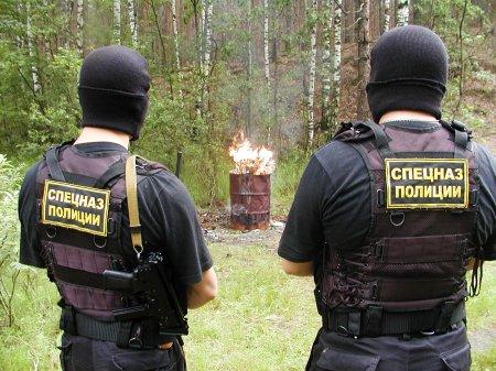 Томские наркополицейские впервые изъяли из оборота крупную партию галлюциногенных грибов