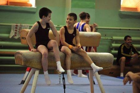 спортивная гимнастика для