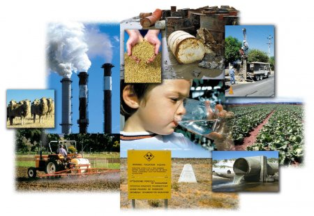Руководители СХК обсудили с общественностью вопросы создания реакторной установки «БРЕСТ-300»