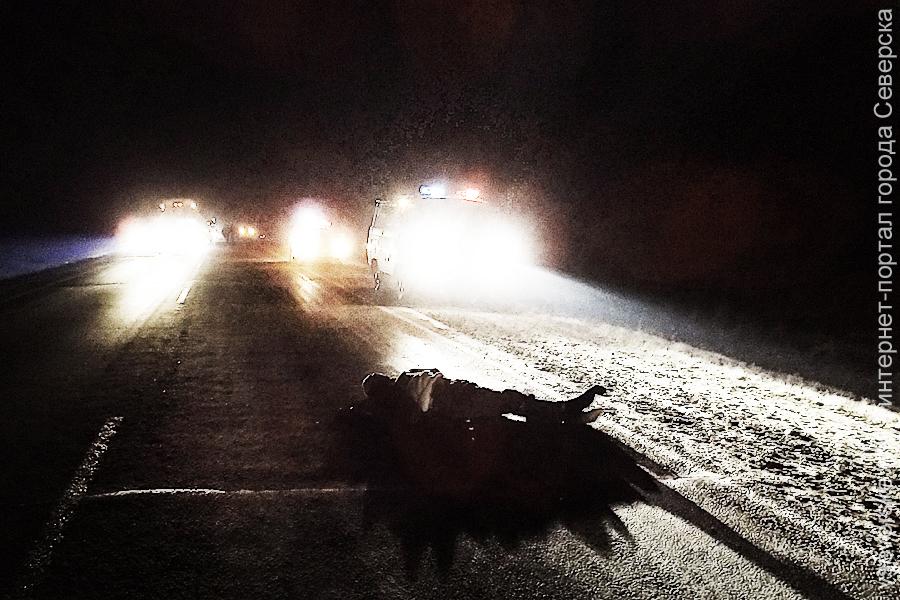 Пьяный мужчина попал под колёса автомобиля