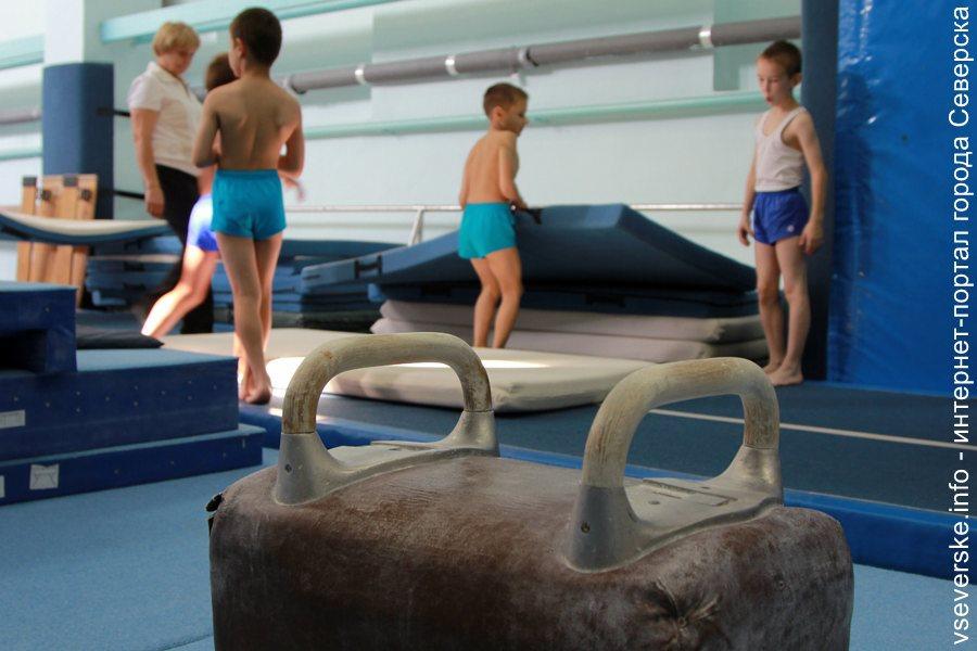 В Северске состоялся Всероссийский турнир по спортивной гимнастике