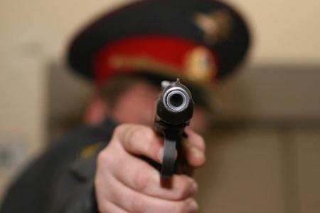 При задержании дебошира полицейские применили табельное оружие