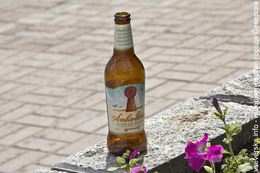 Праздник ВДВ без алкоголя