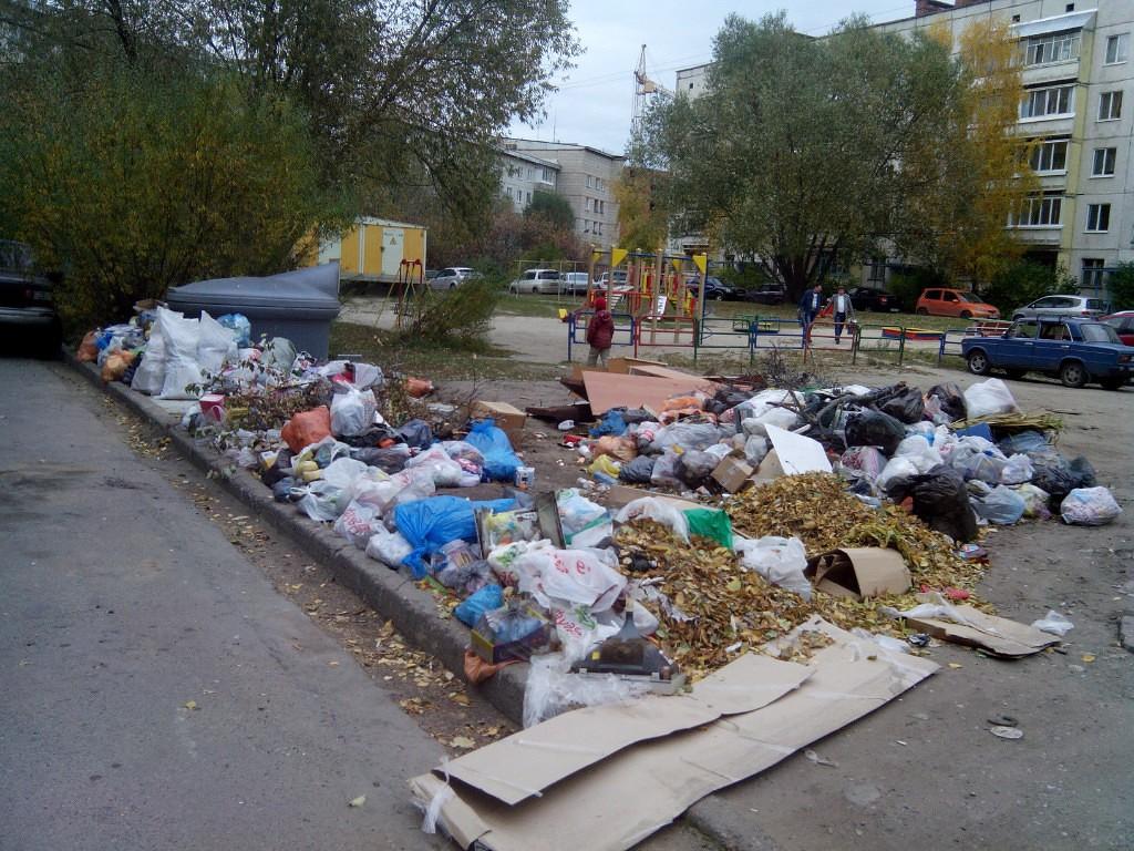 Свалка мусора по адресу Солнечная, 1а и Ленина, 110