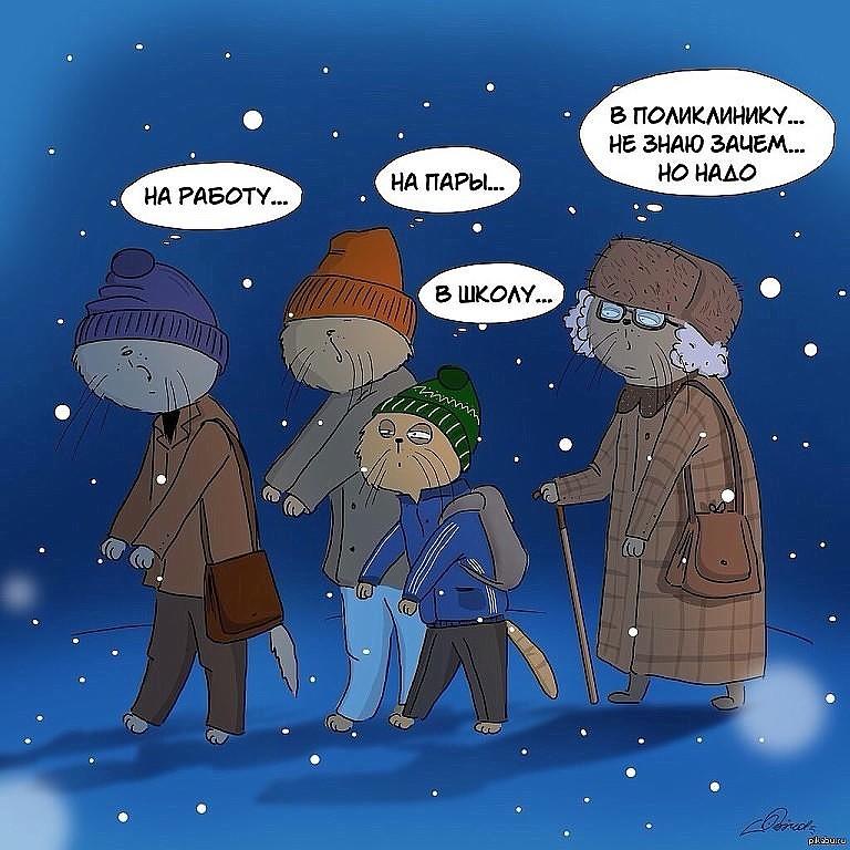 Зимнее утро оно такое