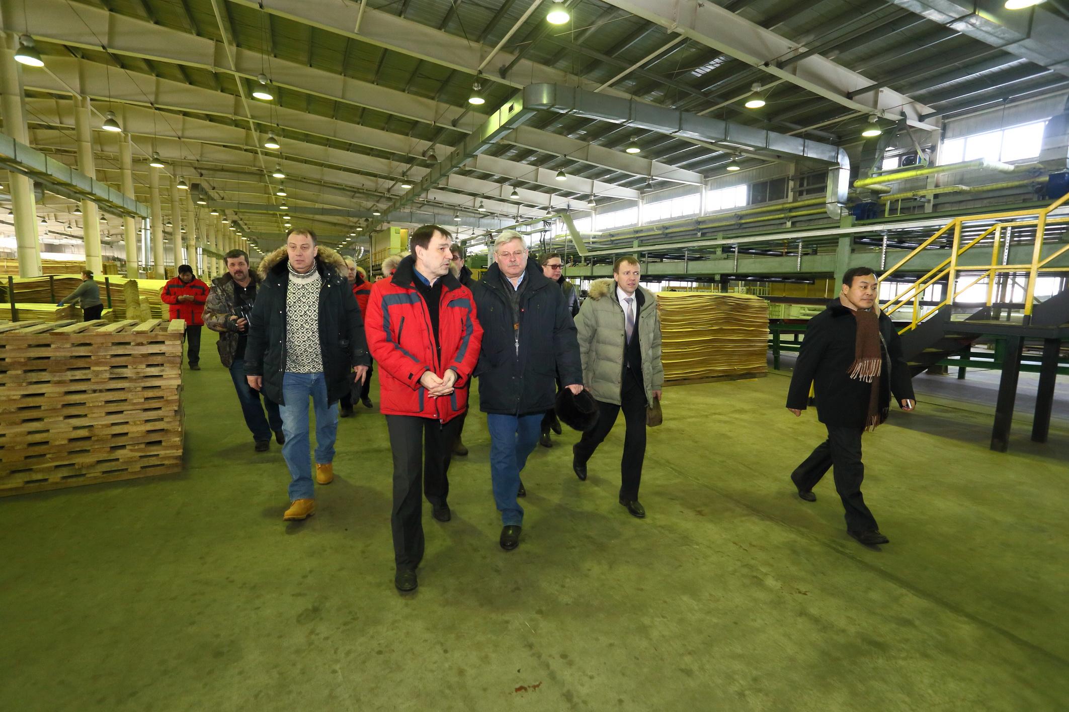 Китайцы строят в Томской области 10 лесоперерабатывающих заводов