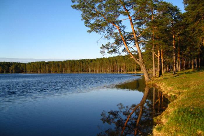 В ЗАТО Северск больше нет подходящих мест для купания