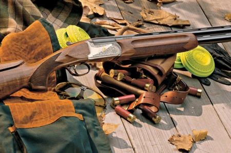 Полицейские изъяли охотничьи ружья у двоих северчан, стоящих на учёте у врача-нарколога
