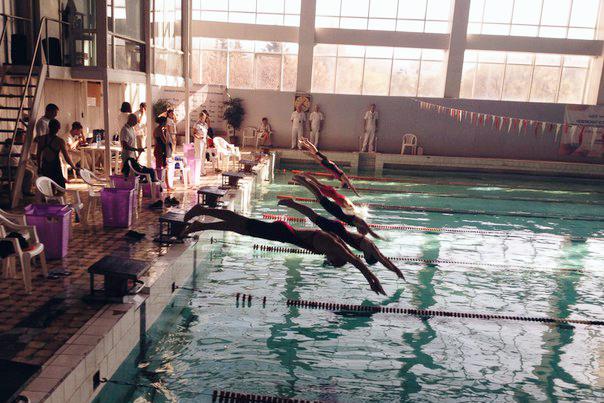 Северчанка завоевала бронзу первенства СФО по плаванию