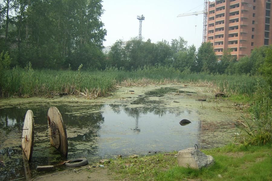 В 2017 году планируют капитально очистить озеро на ДОКе