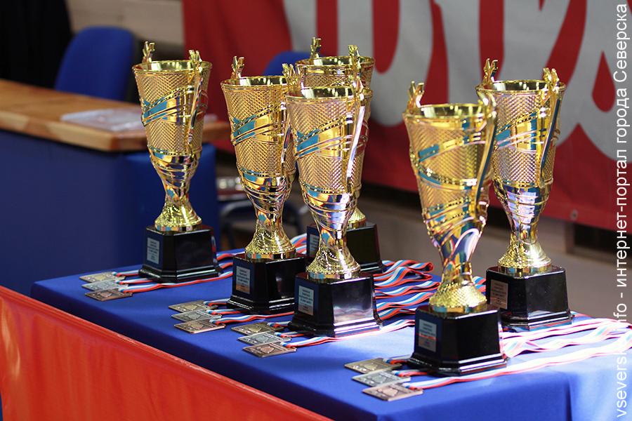 Северчане поборются за медали Чемпионата Сибири по джиу-джитсу