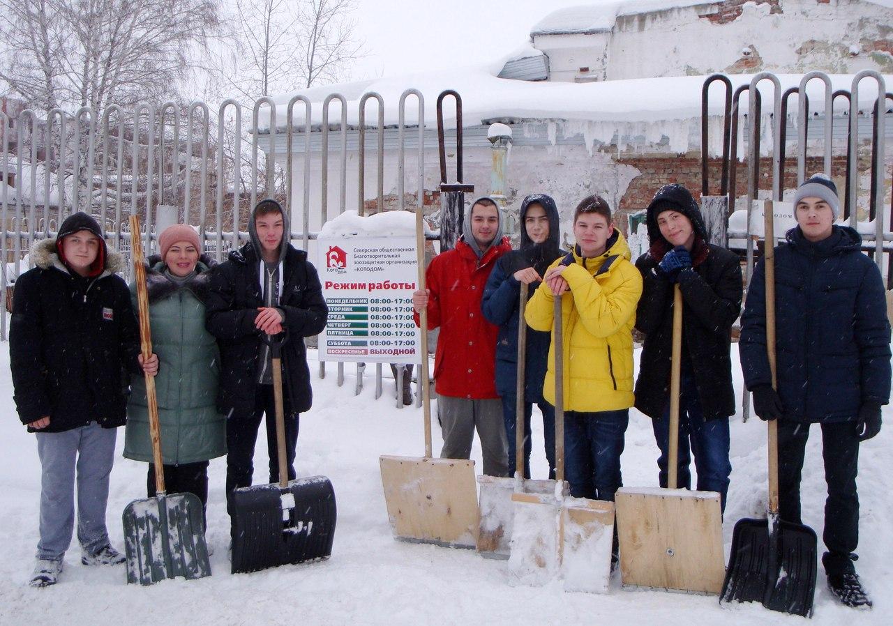 Студенты убрали снег и помогли провести ярмарку-раздачу в приюте для брошенных кошек