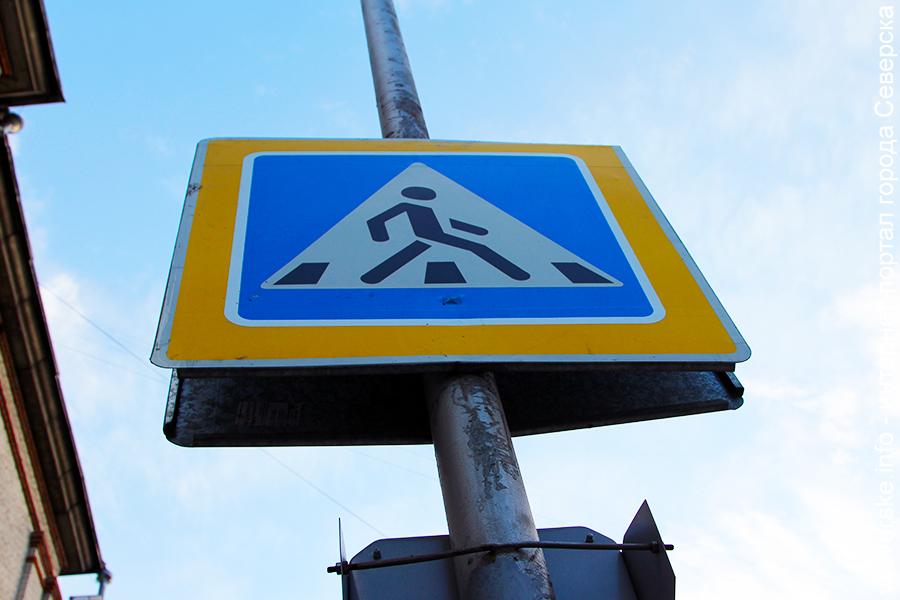 Операция «Пешеходный переход» проходит сегодня на дорогах города