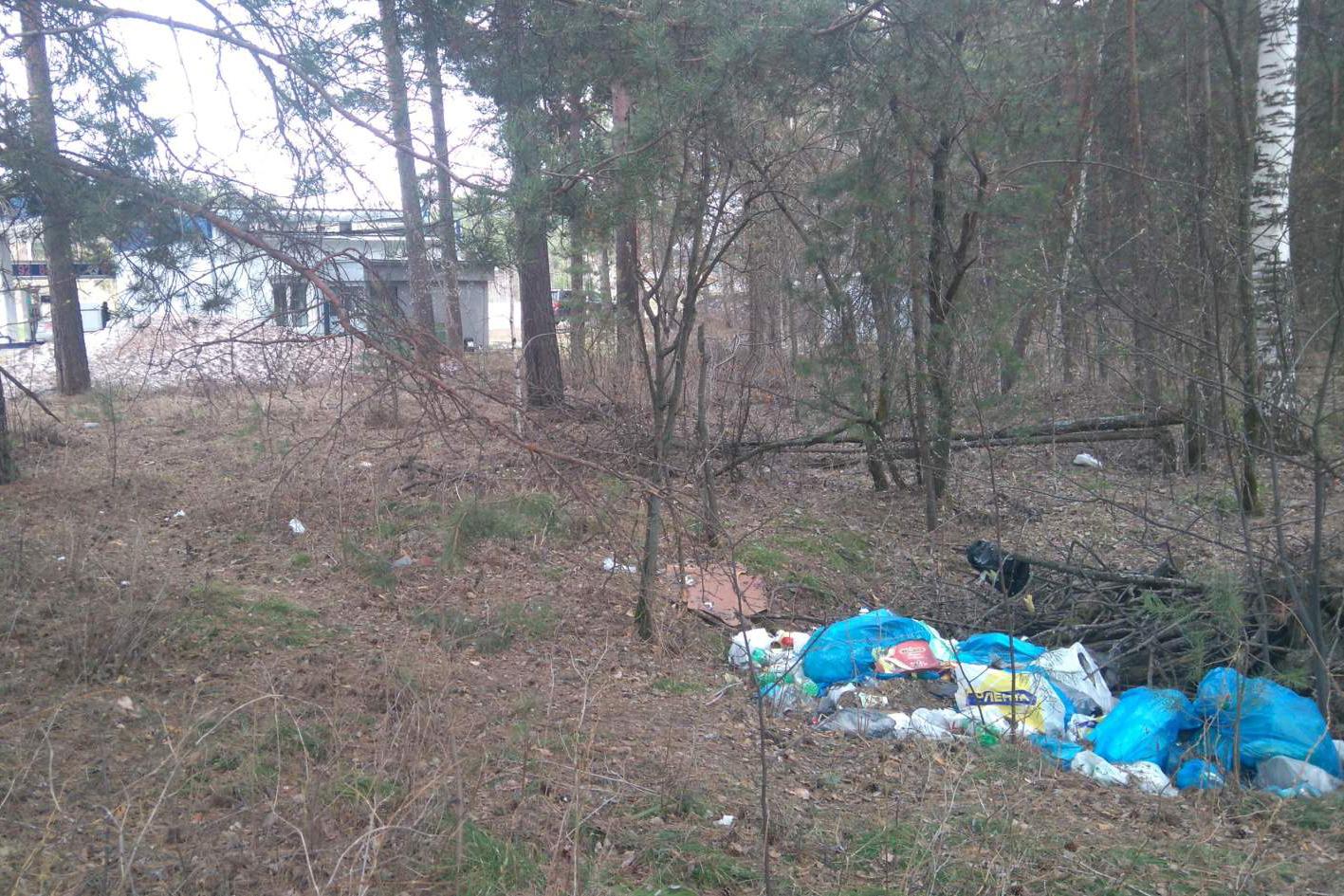 Весь мусор в лес