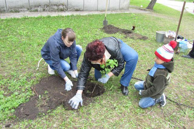 Акция по посадке деревьев в честь создания литературно-психологического клуба «Здесь и Теперь»