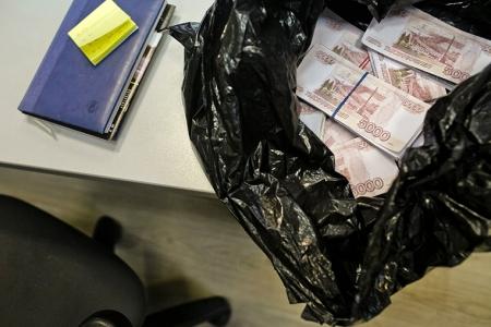 Два северчанина украли у женщины на улице сумочку с полумиллионом рублей