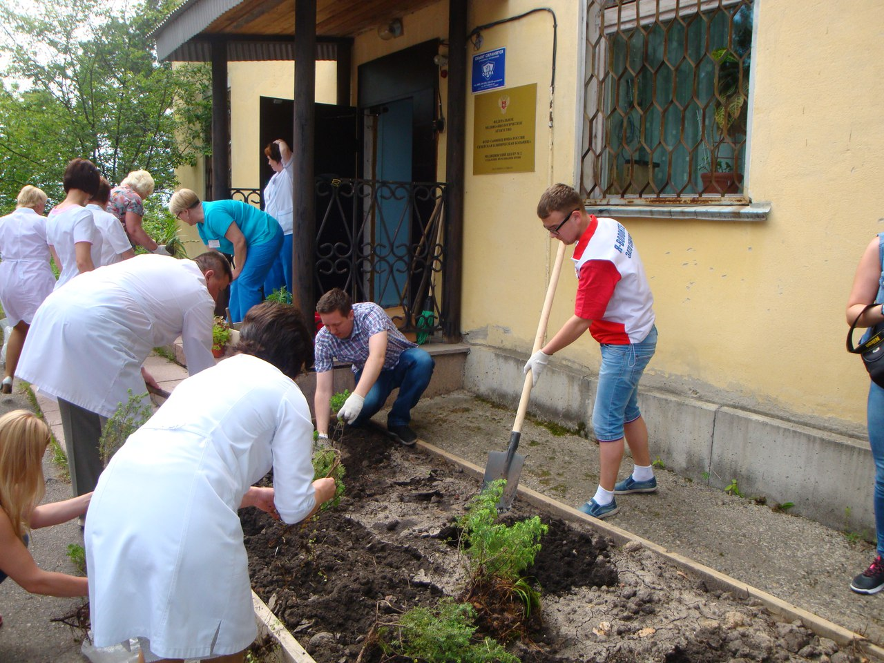 Волонтеры приняли участие в акции по озеленению, посвященной Всемирному дню донора