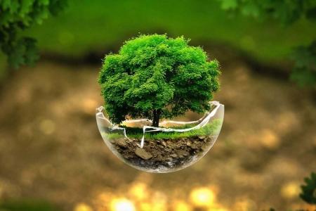 В Северске обсудят вопросы экологической безопасности