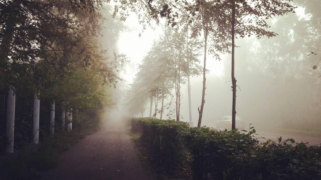 Путь на работу лежит через туман