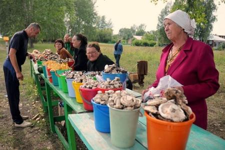 Дикоросы и продукты местного производства в зоне влияния СХК