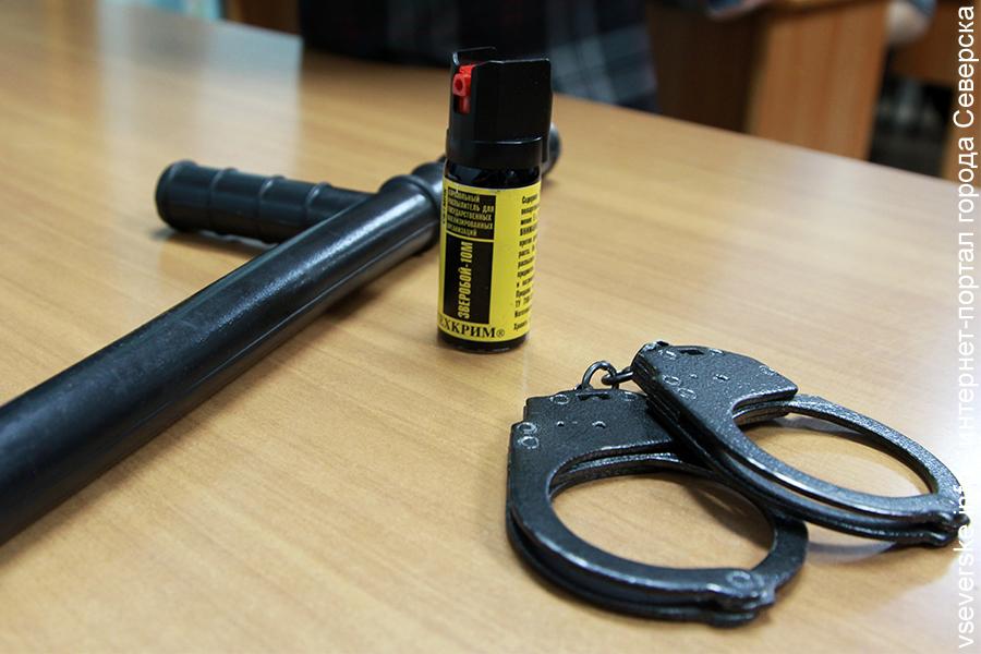 Северчанин осуждён за ложный донос на полицейского
