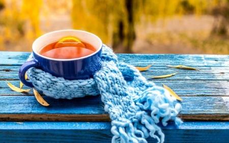 Уровень заболеваемости гриппом и ОРВИ не превышает норму