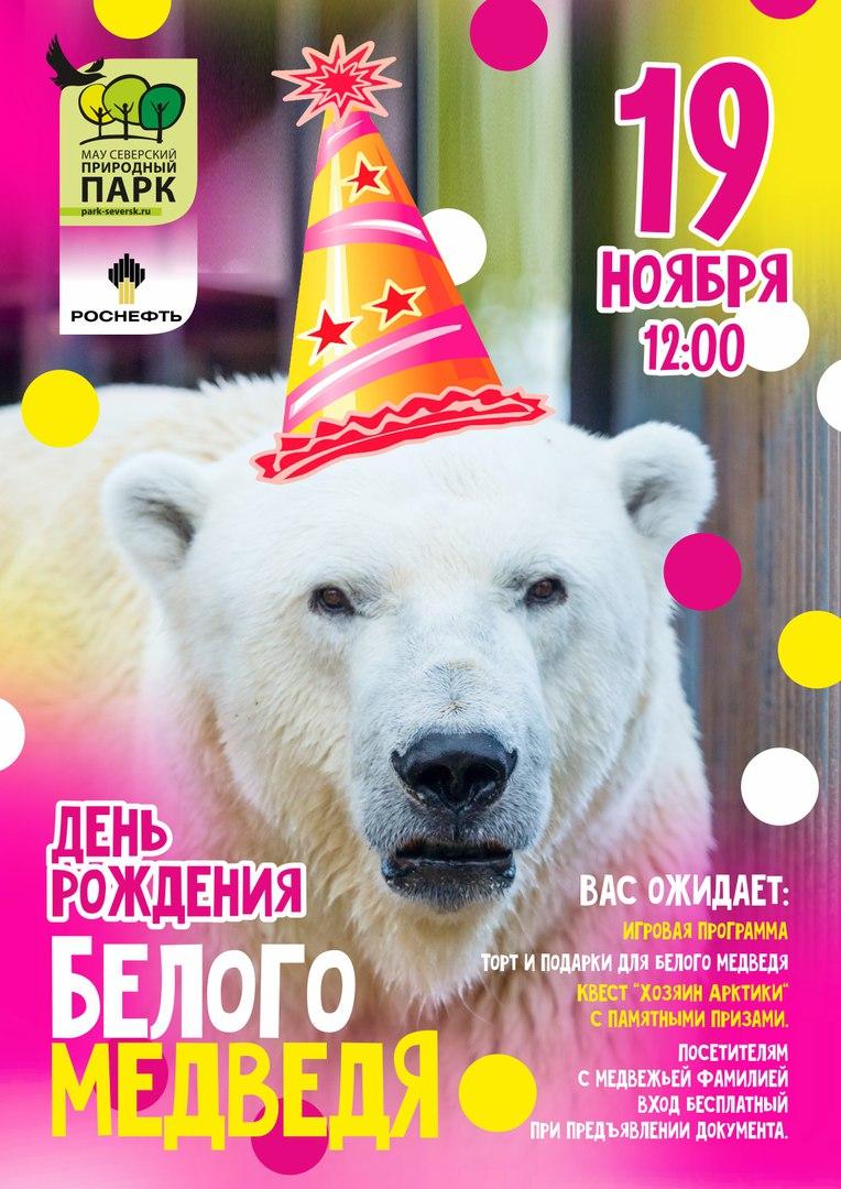 День рождения белого медведя