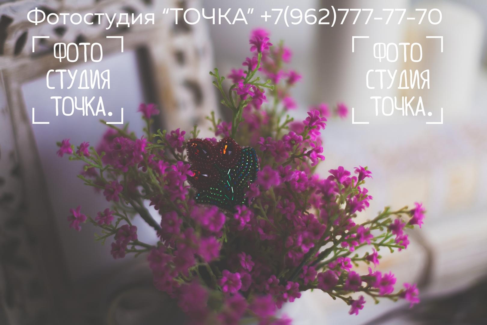 Приглашаем Северчан к нам в ФОТОСТУДИЮ!