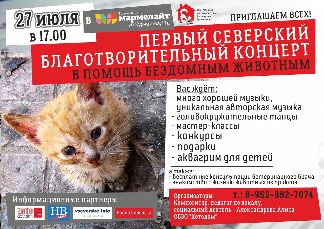 Первый благотворительный концерт в помощь бездомным животным