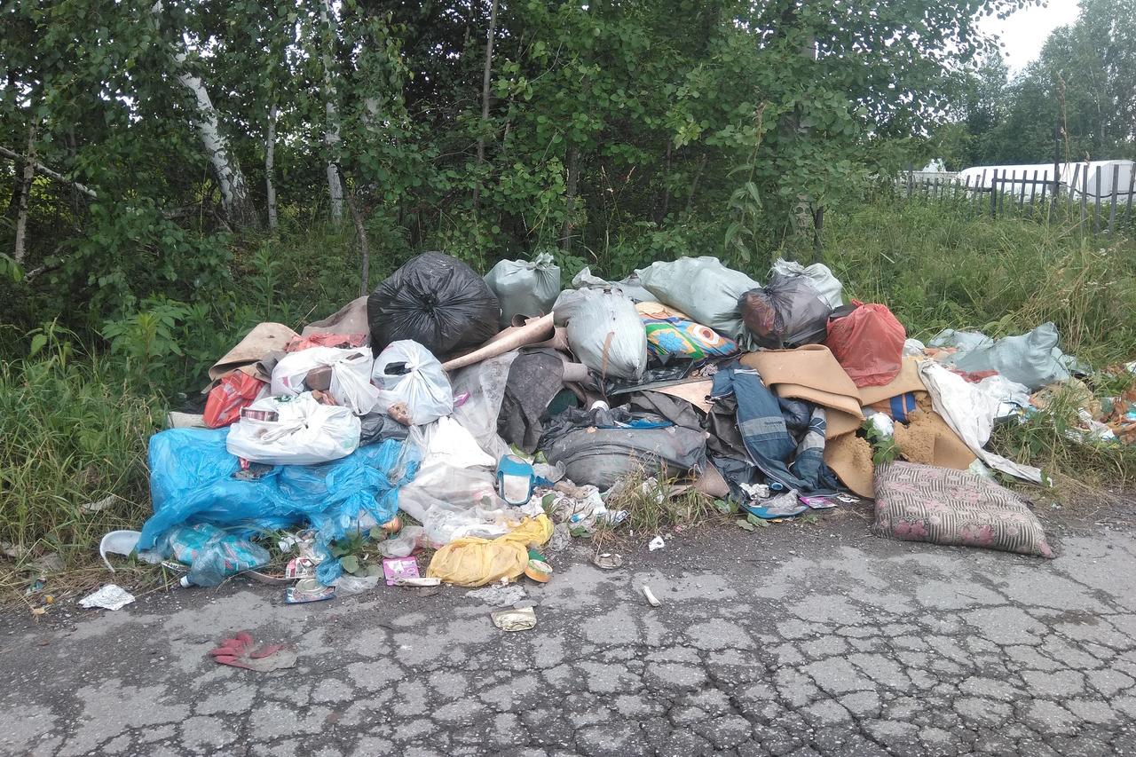 В «Виленке» нет мусорных баков