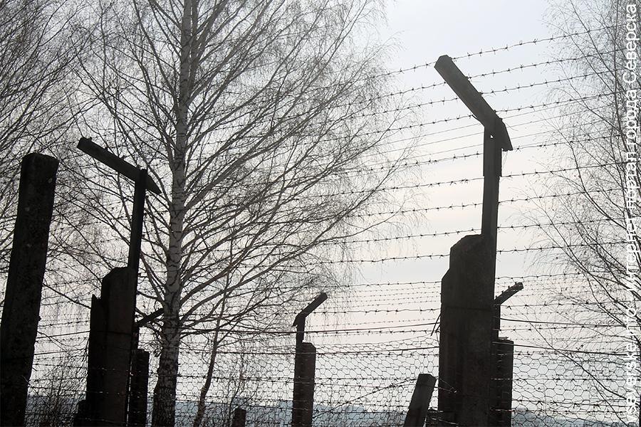 Северчанин получил 4,5 года лишения свободы за 16 пропусков