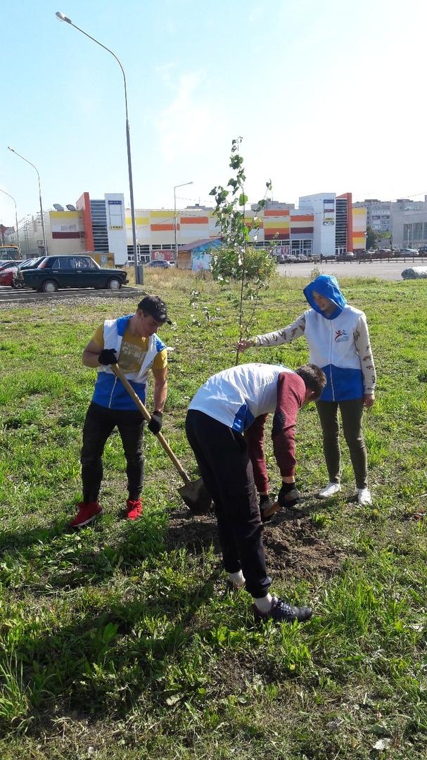 Студенты и преподаватели СПК приняли участие в акции «Посади своё дерево»