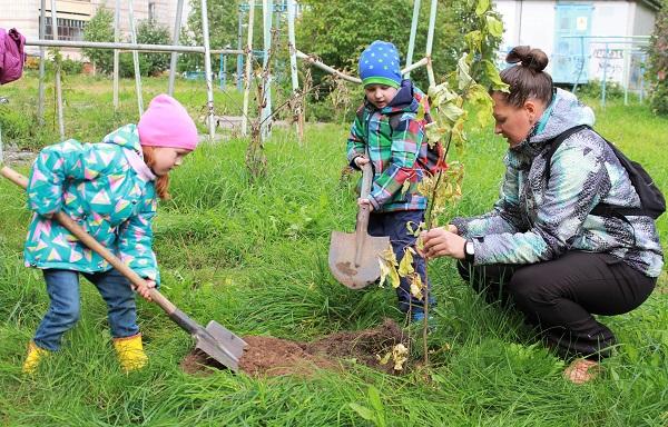 Клуб Бэбик посадили аллею деревьев