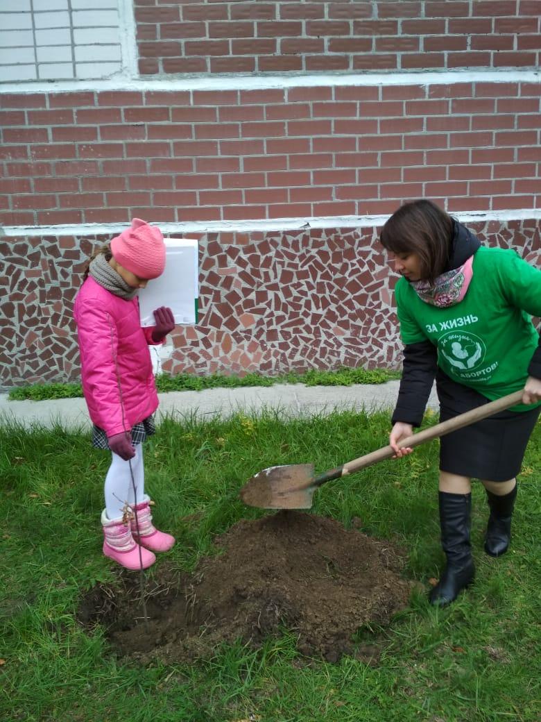 Детям и деревьям – жить и расти!