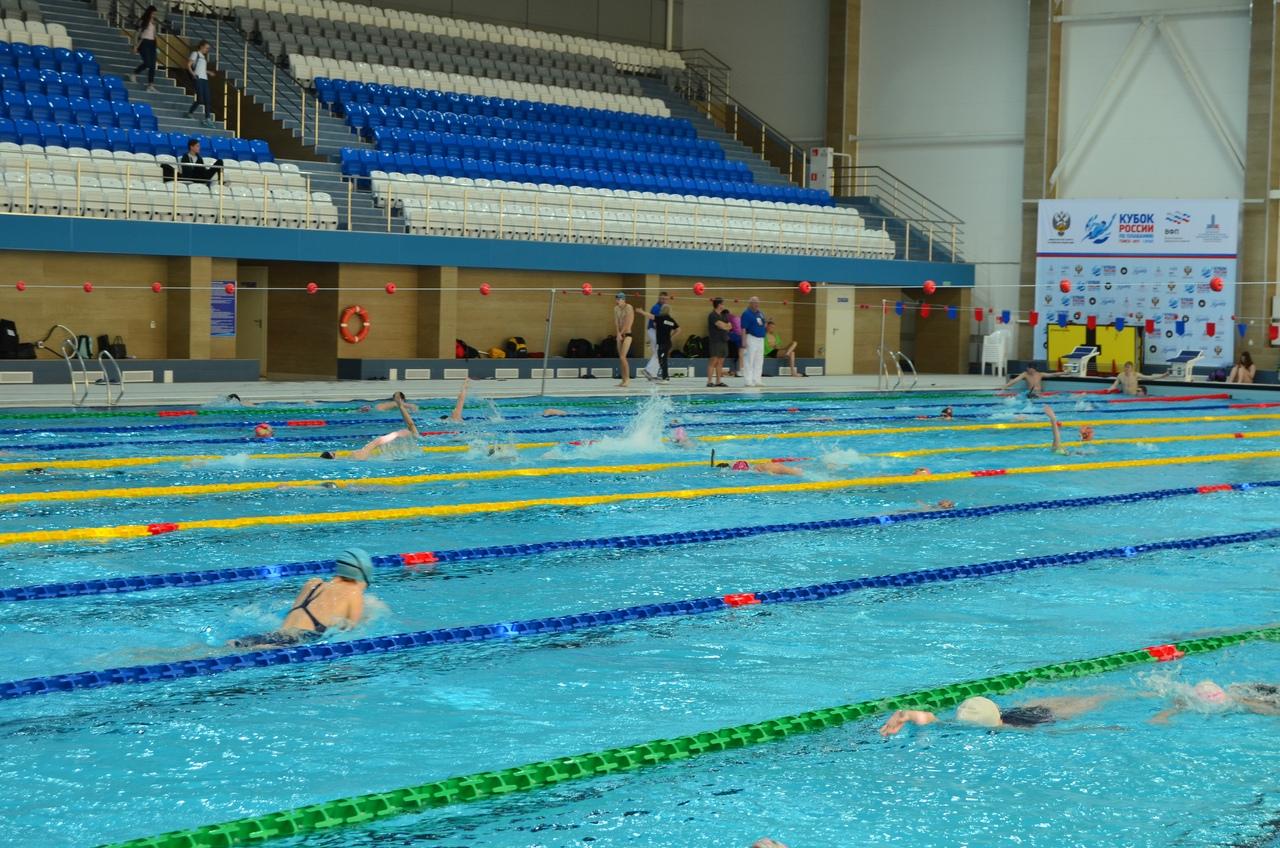 Успехи северчанок на Чемпионате и Первенстве СФО по плаванию