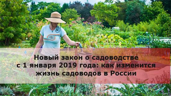 Как нововведения скажутся на ведении огородничества в регионе