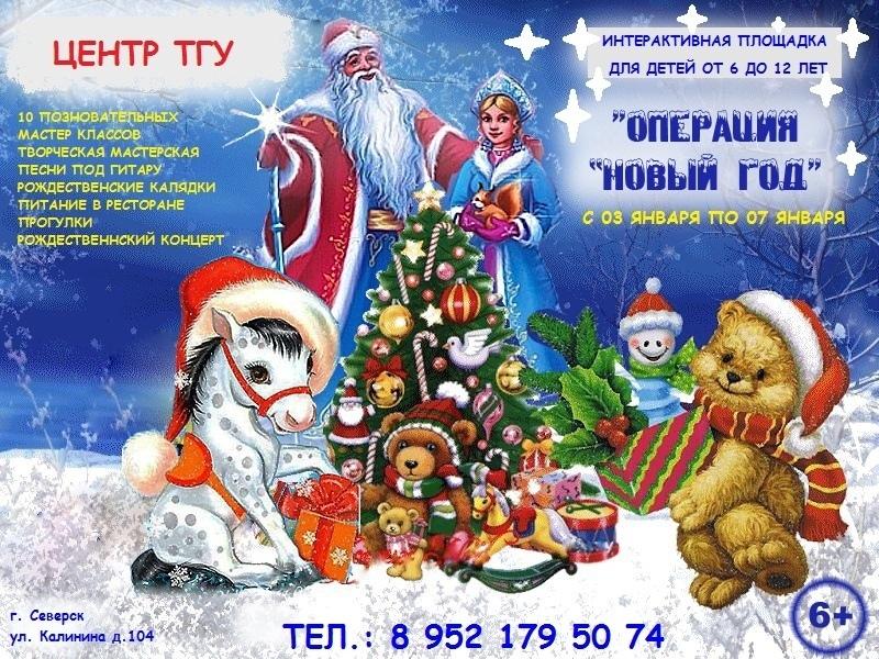 """Центр Талантливых Гениальных Умных открыл набор на новогоднюю площадку """"Операция Новый год"""""""
