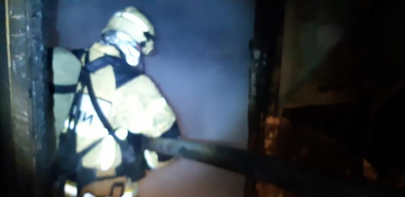 На пожаре в пятиэтажном жилом доме спасено 22 человека, пострадала пожилая женщина