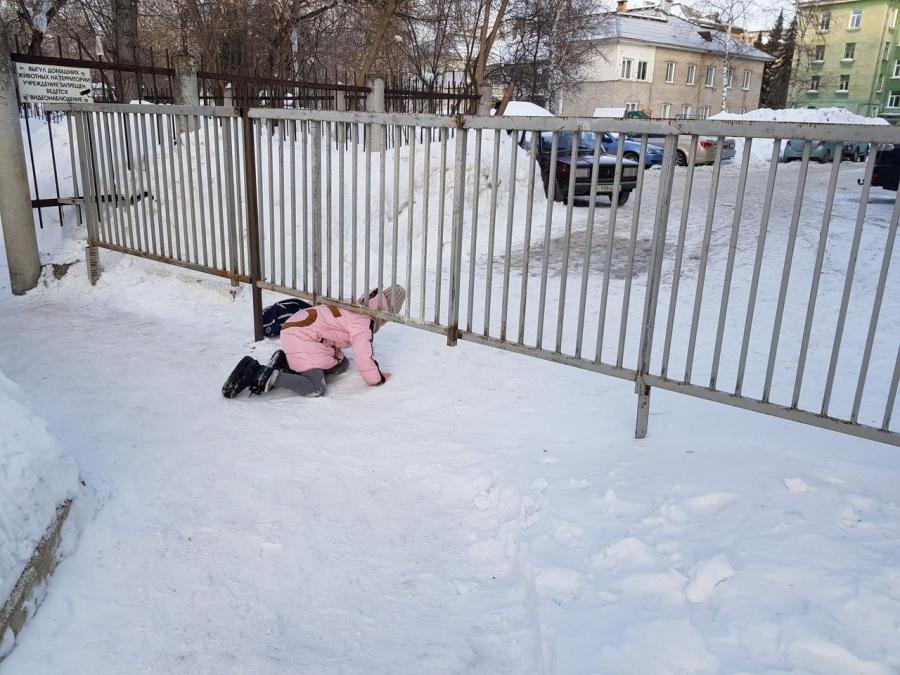 Письмо в редакцию. Забор во дворе дома по адресу ул. Ленина, 40