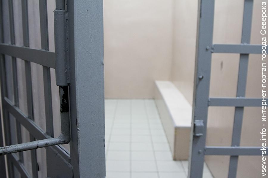 Суд приговорил северчанина к 6 годам колонии за покушение на убийство в помещении для задержанных