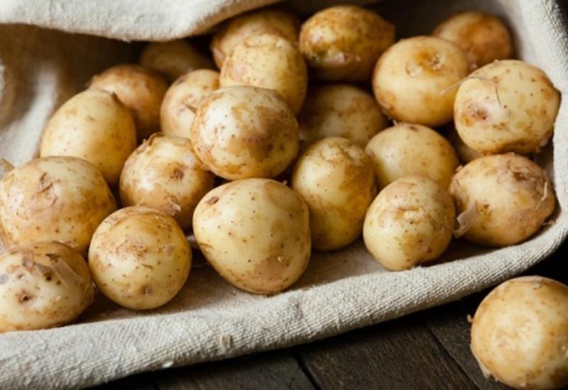 Акция «Социальный картофель»