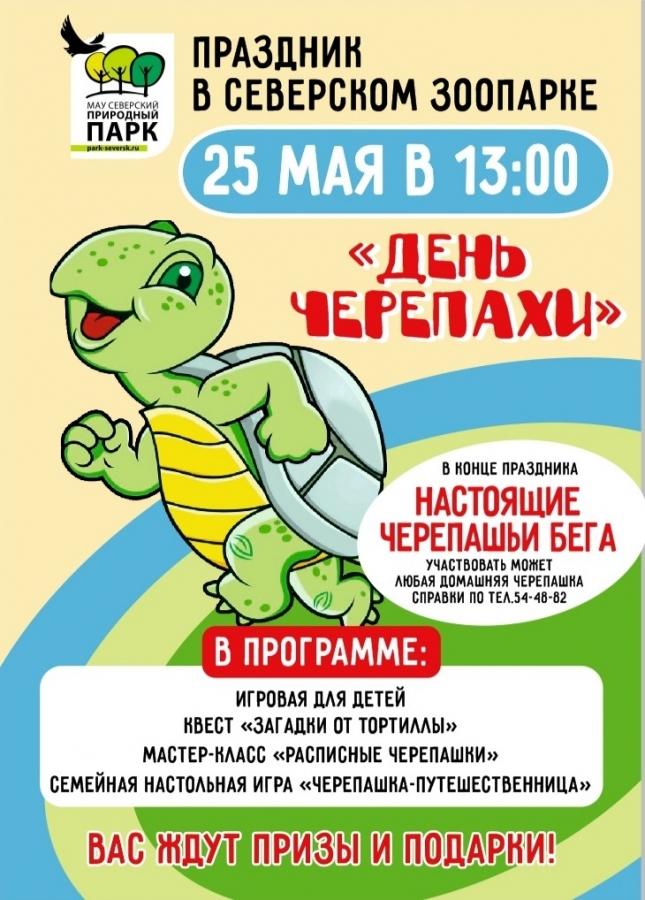 «День черепахи»