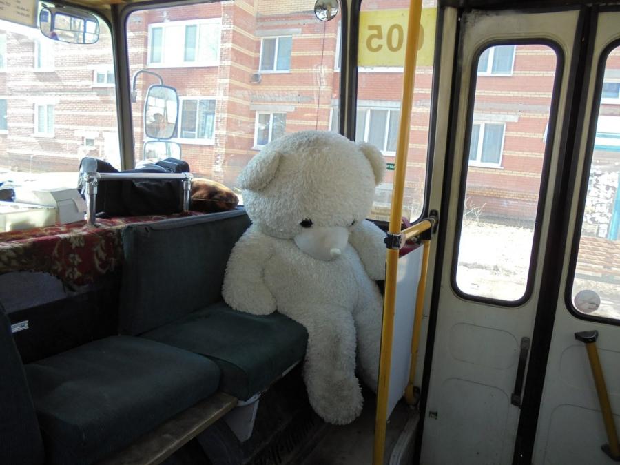 В Северске проверили автобусы