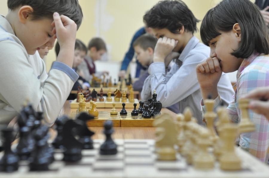 Юные северчане станут участниками профильной смены «Шахматный мир»