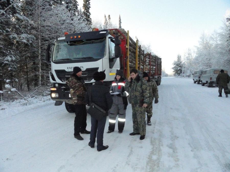 В Северске проведен рейд на предмет законности транспортировки заготовленной древесины