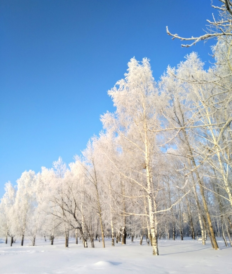 Очередная фотография от Александра Клещёва