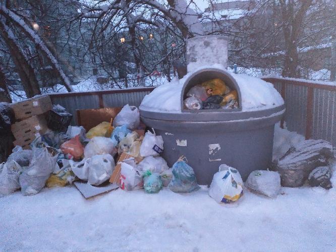 А как у вас обстоят дела с мусором?